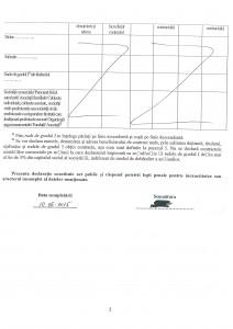 DECLARATII DE INTERESE CONSILIERI_Page_08